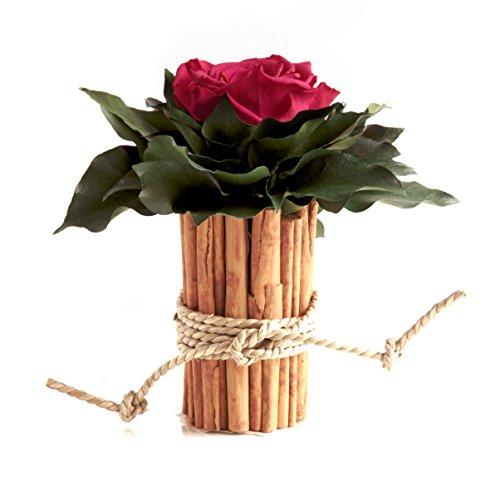 Blumengesteck mit Zimtbecher und 1 Rose konserviert haltbar 3 Jahre Rosengesteck / Blumengesteck / Landhaus / Blumen Deko von ROSEMARIE SCHULZ® Heidelberg (Pink)