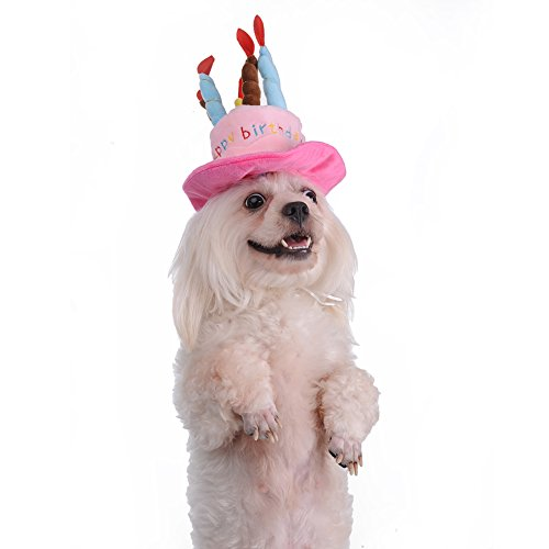 Pet Birthday Hat Headwear With A Cake And Candles Design For Dog In Party