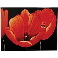 Premier Housewares Poppy Canvas Print, 115 x 88 cm