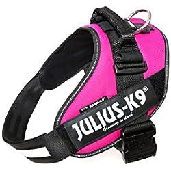 Julius-K9 IDC-Power Harnais pour Chien Rose Fuchsia Foncé Taille 2