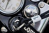 Pantone Pantone Key Chain Portachiavi ad anello e catena 18 centimeters Verde (Green 15-0343)