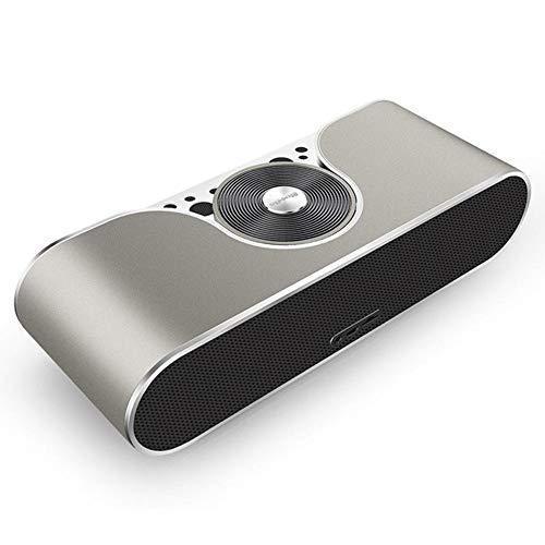 BAIYI Bluetooth Lautsprecher Portable Wireless Speaker Support Sd Card Sound System 3D Stereo Music Surround Outdoor Speaker,Silver Dock Stereo System