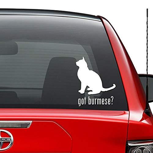 JIXIAN Got Gatto birmano Kitty Pet vinile Die-Cut Decal Sticker per Windows Wall Decor Car Truck Veicolo Moto Casco Laptop e altro - Dimensioni (06 pollici / 15 cm di altezza) / (Colore bianco lucido)