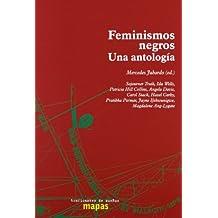 Feminismos Negros. Una Antología (Mapas (traficantes De Sueños))