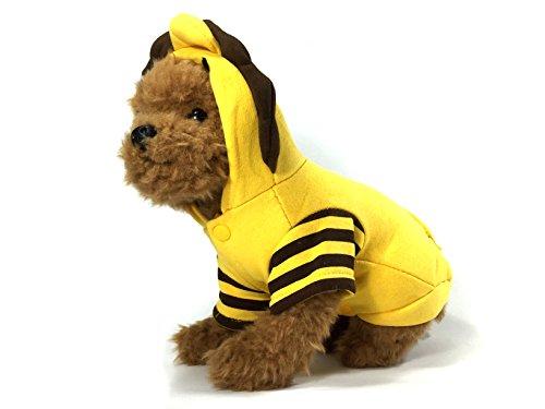 TheDogWear.com Golden Lion Hund Kostüm, M, (Lion Dog Kostüm)