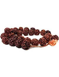 Certified Natural 100% Original Rudraksha Mala With Certificate Of Authenticity 9 Mm Beads