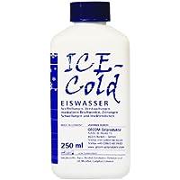 Eiswasser 250 ml Vierkantflasche mit Schraubverschluss preisvergleich bei billige-tabletten.eu
