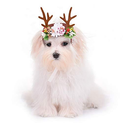DaDago Navidad Reno Cornamentas Cachorro Gracia Sombrero