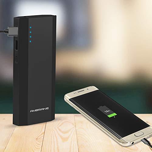 Ambrane 10000 mAh Power Bank P-1111 (Black)