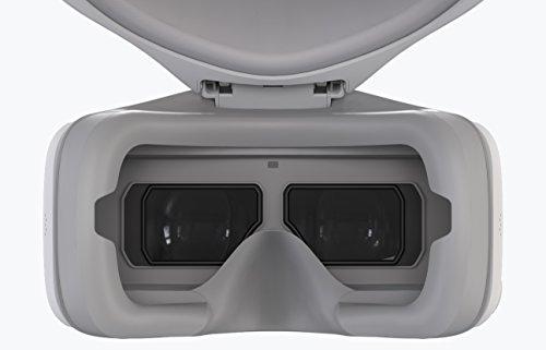 DJI - Goggles | Conçues Pour Les Drones DJI | Design Ergonomique | Pavé Tactile & Radiocommande | Écrans Ultra Haute Qualité | Jusqu'à 6 Heures d'Autonomie | Câble Micro USB | Accessoires Drone