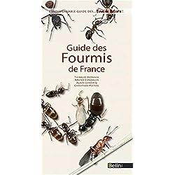 Guide des fourmis de France