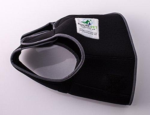 Läufigkeitshose für Hündinnen / Inkontinenzhose für Rüden / Hundeschutzhose aus hochwertigem, perforiertem Neopren, Schwarz, S-L (Herstellergröße 4)