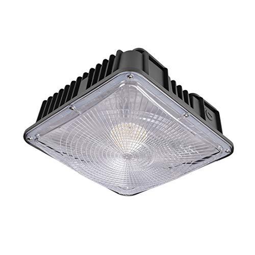 1Pcs 100W LED Überdachungs-Licht 250-400W HPS / MH Ersatz, 12.4
