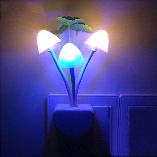 Nota: El artículo SÓLO es para 220-240 V, NO para 110V. Por favor, confirme el voltaje de su área antes de realizar un pedido. Descripción Te encantará esta luz de noche de setas. Algunas setas lindas con algunas flores. ¿Te imaginas que es una luz d...