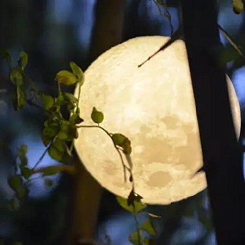 DOLDOA LED Nachtlicht,3D USB Magische Mond Nachttischlampen mit 2 Farben veränderbar(Gelb und Weiß abwechselnd), für Kinder Baby Tisch Zimmer Schlafzimmer,In 3 größe (ohne Stent) (C)