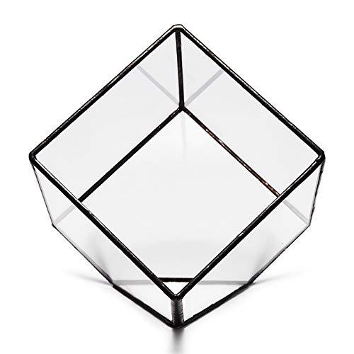 KUNSE Modernes Glas Geometrische Terrarium Tabletop Sukkulente Pflanzen Geneigte Container Fern Moss Blumenpot-Schwarz