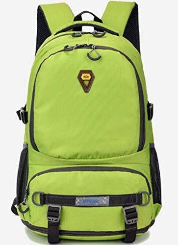 Gli appassionati di outdoor di grande capacità zaino borsa impermeabile Zaini 40L , grey Green