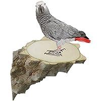 Plataforma de salto de madera para pájaros, plataforma de madera para jaula de animales pequeños, soporte para perca de pájaros, plataforma de madera para ratón, chinchilla, rata, gerbil, hámster enano, loro, jaula de animales pequeños