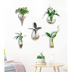 Knikglass Lot de 5 vases muraux géométriques en verre pour plantes aquatiques ou fleurs, décoration murale de jardin Style 2