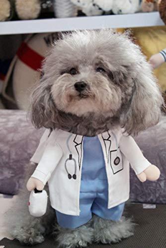 Doktor Kleine Hunde Kostüm - GHYSTORM Dog Kleidung Cool Pet Dog Kostüm Anzug Puppy Kleidung Mantel Kleidung für Hund Kostüm Outfit Krankenschwester Haustier Anzug-Gut aussehender Doktor_XL