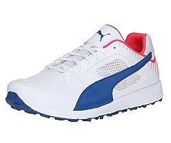 Puma Mens Team Rubber White, True Blue and Bright Plasma Cricket Shoes - 6 UK/India (39 EU)