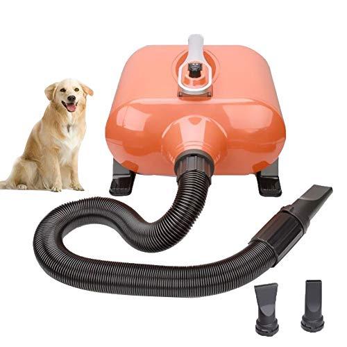 3000W Dual Motor Pet Hair Dryer Infinitamente Variable