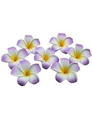 suchergebnis auf fà r blume von hawaii beauty