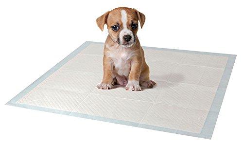 Welpentraining Pads für Toilette Pee 3 Schicht Schutz Ultra Absorbent Small Pets (100 Pads)