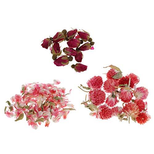 8g bulk fiori essiccati naturali per candela che fa regalo amarena di rose globe