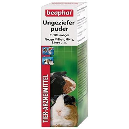 beaphar Bug Powder | Medium Mites at Kleintieren | Flea Protection | Also to Prevent Lice Suitable | 30 G Can 1