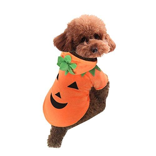 üm für Hund und Katze, Kürbiskostüm für Halloween oder Weihnachten, lustige und warme Teddy-Fleece-Kapuzenjacke, Cosplay-Kostüm, Kleidung für Herbst und Winter, Hoody (Orange Jumpsuit Kostüm Weiblich)