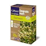 Graines de sarrasin engrais vert écologique naturel (175 grammes)