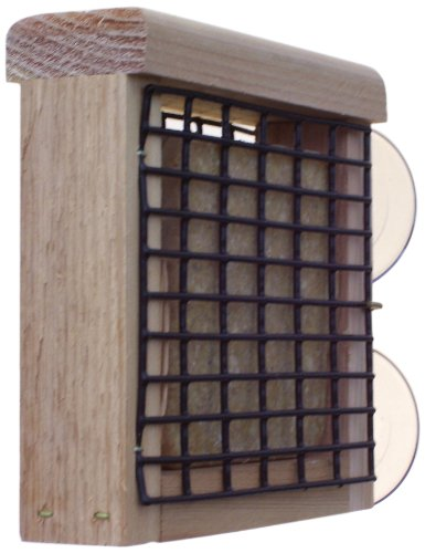 Birds Choice window-mount 1 Kuchen Talg Feeder (Feeder Suet Bird Mount)