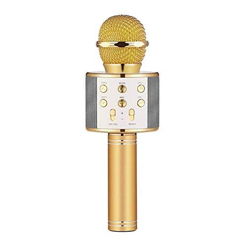 ZYG.GG Wireless Bluetooth Karaoke Mikrofon, Tragbar Familie KTV Echtzeit-Anti-Ear-Funktion Unterstützung TF-Karte Geeignet für iPhone/iPad/Sony, PC und alle Smartphones,Gold - Karaoke Familie