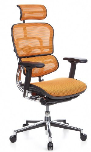 hjh OFFICE 652200 Bürostuhl/Chefsessel Ergohuman