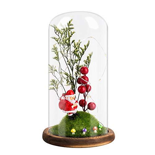 KOBWA Weihnachtsmann rote Früchte in Glaskuppel mit LED-Licht und braunem Holzsockel überzogen, magische verzauberte Dekoration für Weihnachten, Zuhause, Hochzeit 1