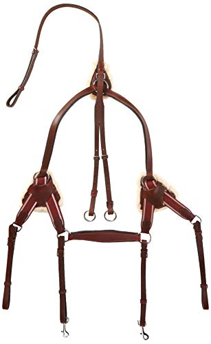 Cwell Equine Leder 5 Point Brustblatt + Martingal Cherry braun, XFull/Full/COB/Pony (X Full)