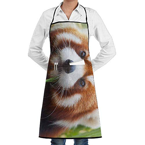 dfgjfgjdfj Red Panda Schürze Lace Adult Mens Womens Chef Adjustable Polyester Long Full Black Cooking Kitchen Schürzes Bib with Pockets for Restaurant Baking Crafting Gardening BBQ - Lady Panda Kostüm