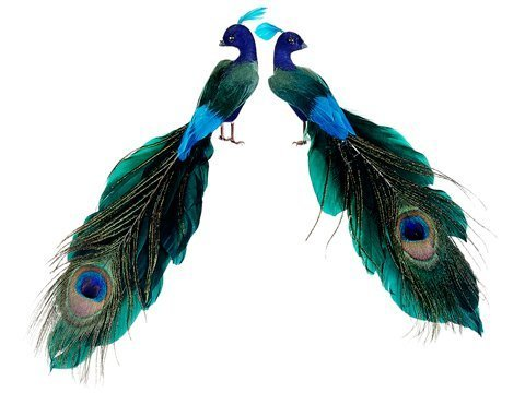 close-tailed-peacock-pick-in-natural-peacock-coloring-8-long-2-pieces-per-set-by-silk-decor