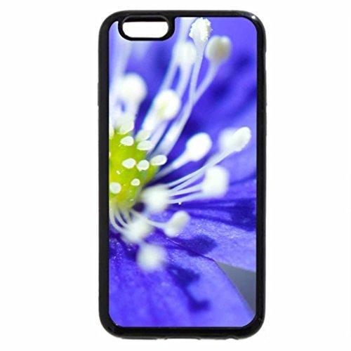 iPhone 6S Plus Case, iPhone 6 Plus Case, kidney wort!!