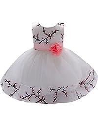 feiXIANG Bambino Ragazze Abiti Stampa Tutu in Pizzo Eleganti Vestiti della  Ballo Battesimo Vestito da Principessa d7fd25a05f9