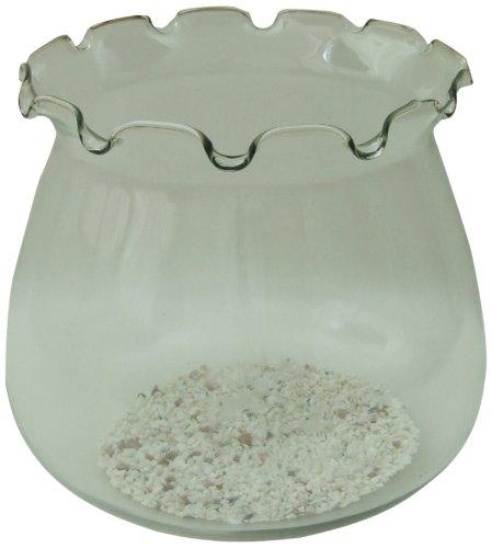 Aquarline Tall Glass Goldfish Bowl, 10 Liter