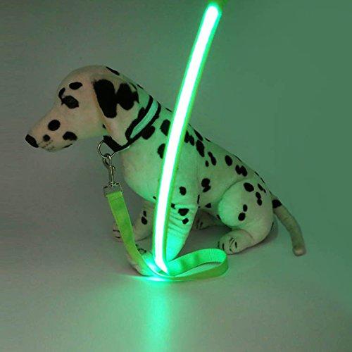 hseil, Glühen Multifunktionsschnalle Hundeleine, Gurtseil, Haustier Gürtel Leuchten Im Dunkeln - Grün, 1PCS (Wählen Sie Ihr Gift-halloween-party)