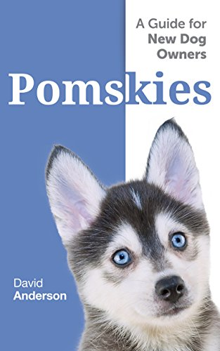 Pomskies: A Guide for the New Dog Owner: Training, Feeding, and Loving your New Pomsky Dog (English Edition) (Pomeranian-mix)