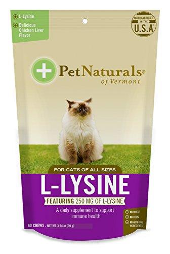 Pet Naturals L-Lysine Chews Spielzeug für Katzen, des Immunsystems und Unterstützung der Atemwege Nahrungsergänzungsmittel, 60Bite Kauspielzeug (3,17oz)