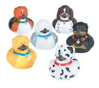 Dog Rubber Ducks, Dog Family 6 different designs set of 6 from Ducks in Disguise at Homestreet
