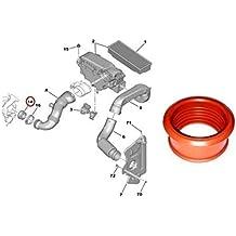 Newgrees Manguera DE Tubo DE Aire Turbo para Peugeot 206 207 307 308 407 Expert Partner