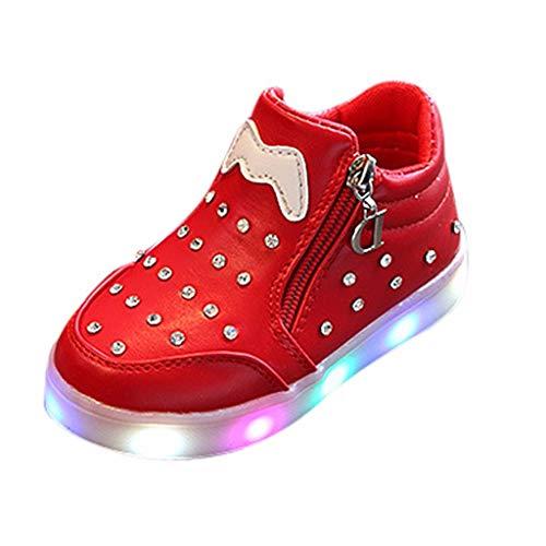 BoyYang Kinder Schuhe Babyschuhe Kleinkind Jungen Mädchen Weiche Sohle rutschfeste Baumwolle Segeltuch Mesh LED Leuchtende Reißverschluss Slip-on Turnschuhe Draussen Socken Schuhe