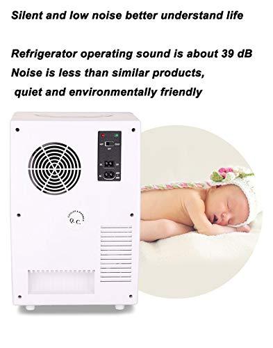 414vTJMKlxL - JCDZSW Mini refrigerador 10L Caja de calefacción y refrigeración electrónica de Doble propósito para automóvil Familiar, refrigerador para la Piel, Alimentos, medicamentos, hogar y Viajes