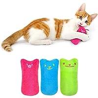 القطط تستخدم مضغ الأسنان لتنظيف ألعاب النعناع البري على شكل السمك عند اللعب، ألعاب مضغ مبتكرة على شكل نبات حشيشة الهر